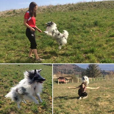 Sarah (Schweiz) & Zakie haben auch ohne Agility jede Menge Spaß ❤️