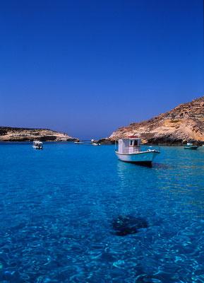 Cod. Lampedusa 002