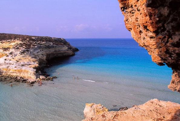 Cod. Lampedusa  012