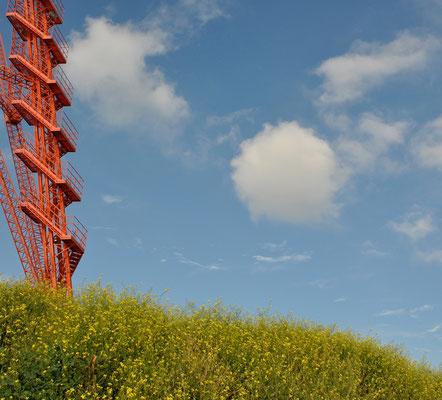 Cod. Torre Faro 004