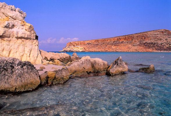 Cod. Lampedusa  008