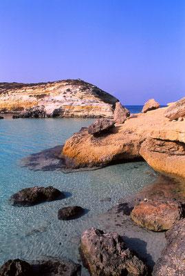 Cod. Lampedusa 006