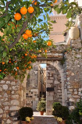 Cod. Taormina 014