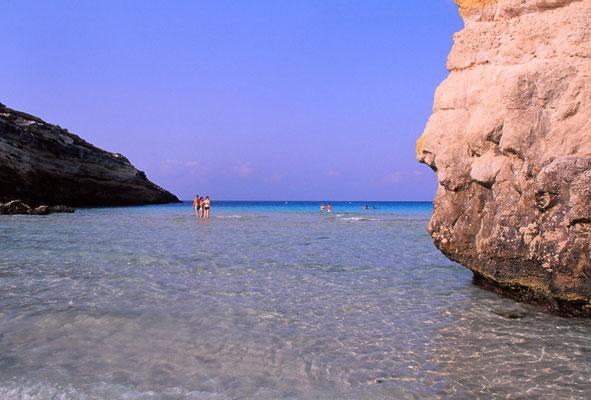 Cod. Lampedusa  011