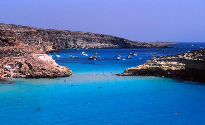 Cod. Lampedusa 004