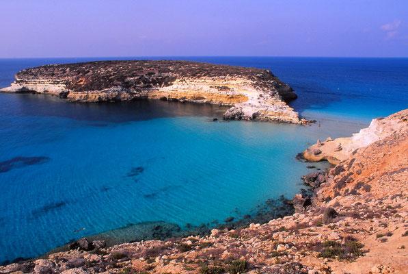 Cod. Lampedusa 001