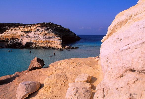 Cod. Lampedusa  010