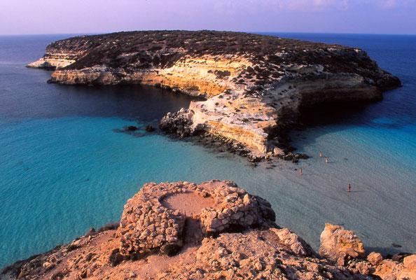 Cod. Lampedusa  013