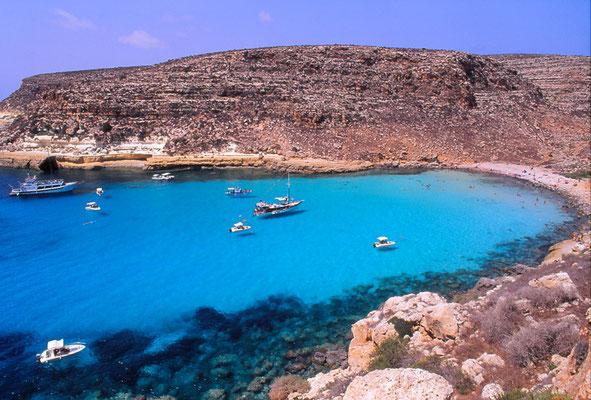 Cod. Lampedusa 003