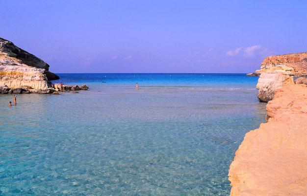 Cod. Lampedusa 007