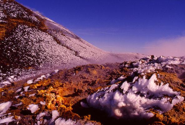 Cod. Etna 010