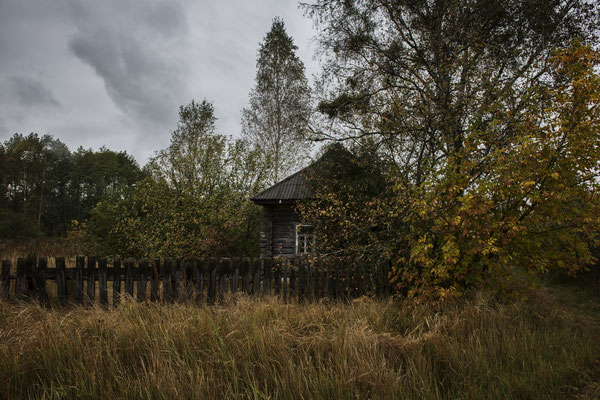 A house surrounded by nature in an abandoned village in the Chernobyl exclusion zone.