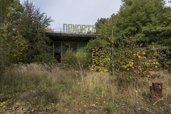 the Pripyat coffee now shrouded by vegetation in the abandoned city of Pripyat.