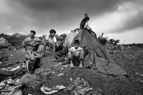 Tokai resting after work, Demra Matoel dump, Dhaka