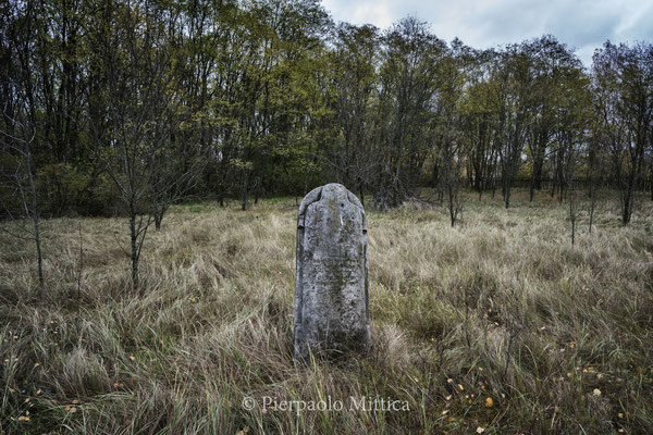 The old Jewish cemetery of Chernobyl.