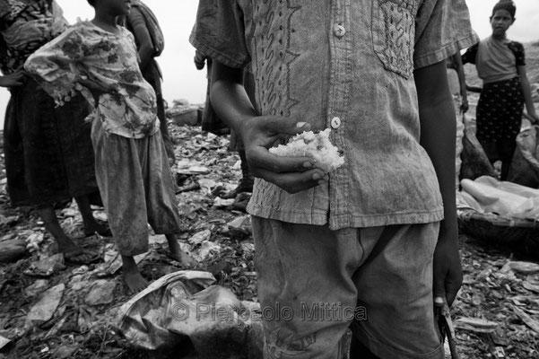Tokai eating food on the garbage, Demra Matoel dump, Dhaka