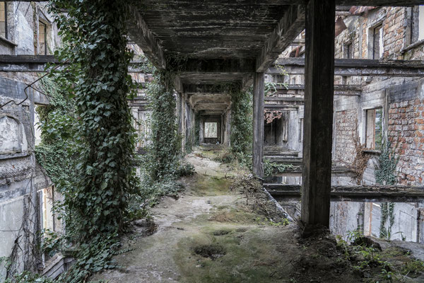 Inside the abandoned and derelict parliament building in Sukhumi.