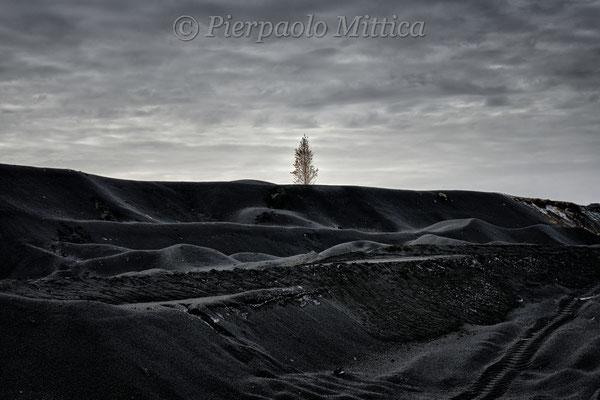 The revenge of nature, slag mountain