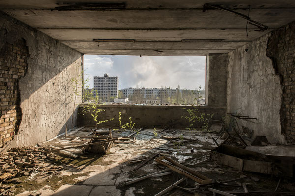 A tree grown inside the Polessya hotel located in the abandoned city of Pripyat.