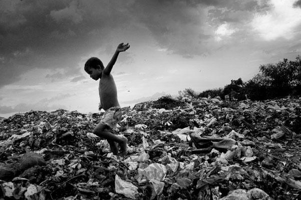 Tokai flying on the garbage, Demra Matoel dump, Dhaka