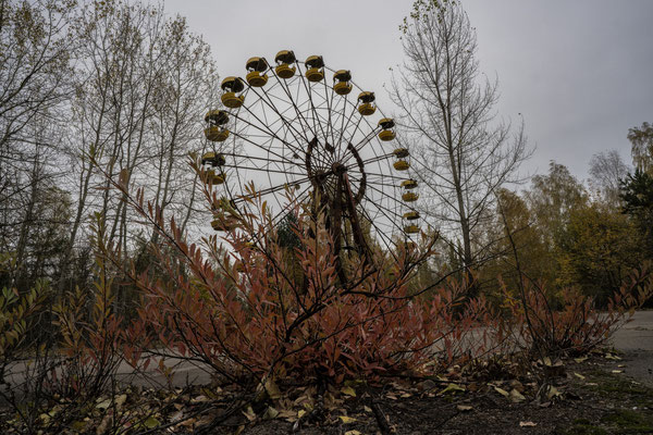 The Ferris wheel in the city of Pripyat, surrounded by the nature that has now taken over the city.