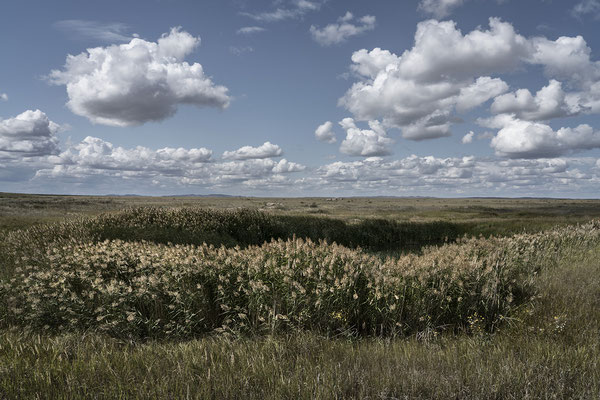 Ground zero, at the epicenter of the Semipalatinsk Polygon, where the first atomic bomb was exploded. This site in one of the most contaminated place in the world.