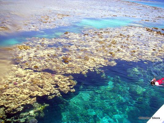 wunderschöne Rifflandschaften