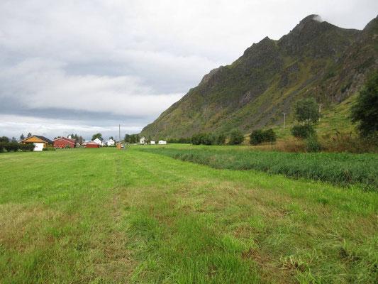 Landwirtschaftlich geprägt mit Meerkontakt und Bergen ist die südlichste Insel Hadselöja der Vesteralen