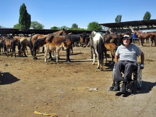 Auf dem Samstagsmarkt in Kochkor, wir entschieden uns dann doch, mit dem Duro weiterzureisen, und nicht aufs Pferd umzustatteln