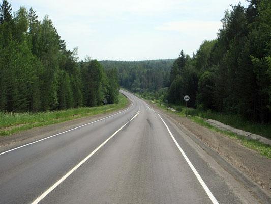 Sibirien ist geprägt von viel Wald, nicht immer nur Birke
