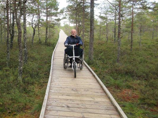 Im Nationalpark Lahemaa hat es eine Strecke die wir mit dem Rollstuhl bewandern können