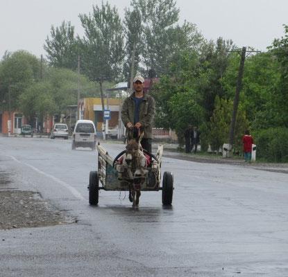 Eselswagen sind häufig auf der Strasse anzutreffen