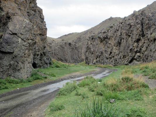 Auf der Zufahrt zur Düngeree Am teilen wir die den Weg mit dem Fluss