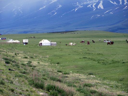 Viele Nomaden mit Herden und Jurten sind auf der Hochebene auf 2400m