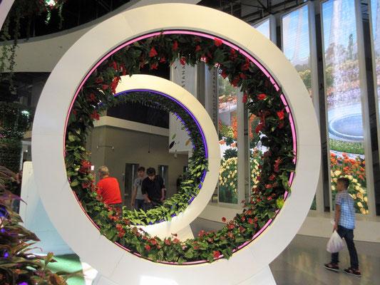 Dass Blumen auch mit dem Kopf nach unten wachsen, wenn nur das Licht von der richtigen Richtung kommt, lernen wir an der Weltausstellung