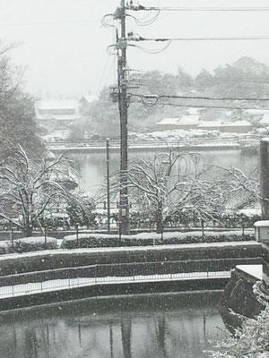 時には吹雪の景色になって  水墨画のような八条ヶ池