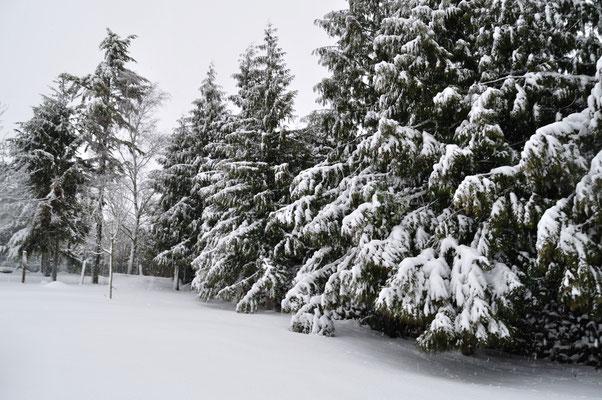 l'hiver au Moulin à Grains