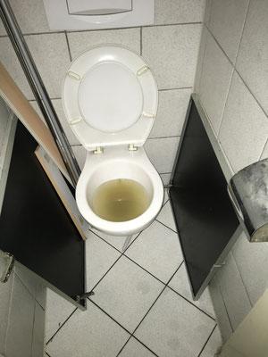 WC Geruchsverschluss unterhalb des Rückstauniveaus