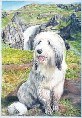 Hundeportrait mit Lnadschaft in Gouache
