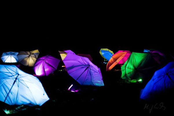 Leuchtende Traumpfade im Blühenden Barock 2020