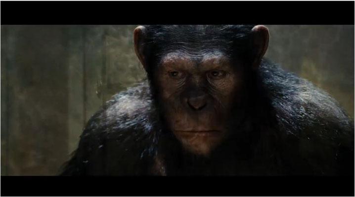 Andy Serkis alias Gollum übernimmt die Rolle als Caeser