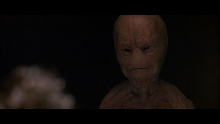 die im Film gezeigten Außerirdischen entsprechen in groben Zügen denen aus Travis Waltons Beschreibungen. Sie unterscheiden sich von anderen untersuchten Fällen teilweise erheblich