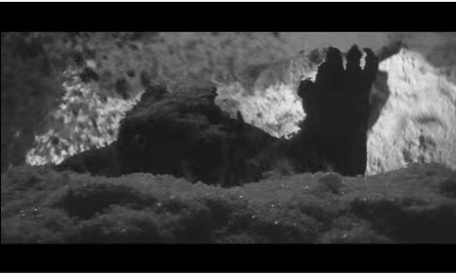der erste Auftritt Gameras ist nett inszeniert: das Monster wird von unten mit einer Lichtquelle angestrahlt.  Mit einer Kanone wird  von der Seite Styroporeis ins Bild gesprüht  und versperrt zunächst die freie Sicht auf das Monster
