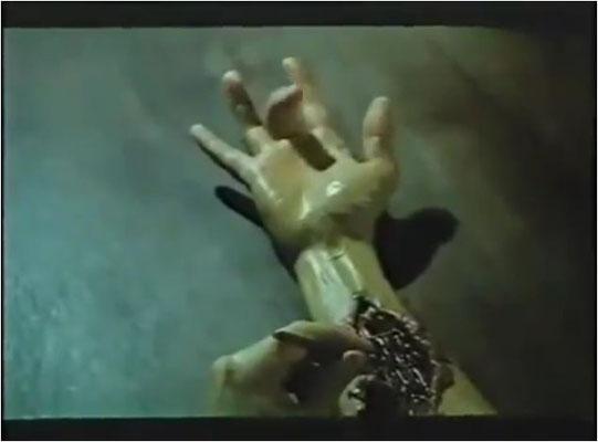 Exploitations sind für einen mehr oder wenigen subtilen Ideenklau bekannt...aber wer hat nur Arnie' s Hand geklaut?