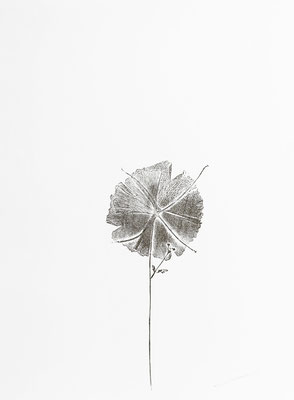 Origami la feuille se plie, monotype sur papier Rivoli, 30x40 cm, 2020
