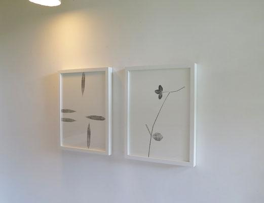 Poésie végétale, monotype sur papier Rivoli, 30x40 cm, série 2018, 2019