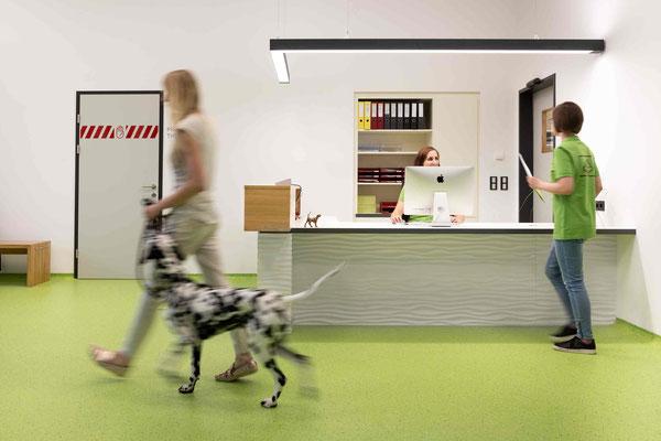 vetpix.at - MRT für Hunde und Kleintiere, CT für Hunde und Kleintiere - freundlicher Empfang für Tier & Mensch - Ihr Tier in guten Händen.