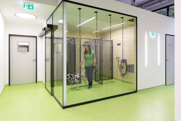 vetpix.at - MRT für Hunde und Kleintiere, CT für Hunde und Kleintiere - Ihr Tier in guten Händen. - Region Salzburg