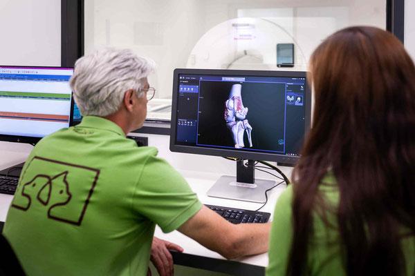 vetpix.at - MRT für Hunde und Kleintiere, CT für Hunde und Kleintiere - Diagnostikraum, MRT & CT Analyse - Blick auf die Details