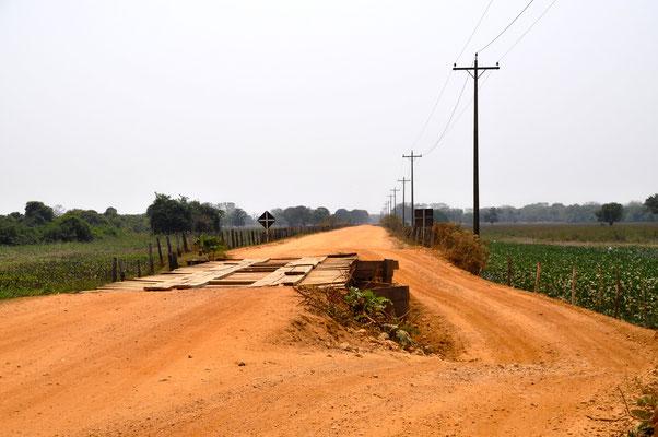 Pantanal Brasilien Straße